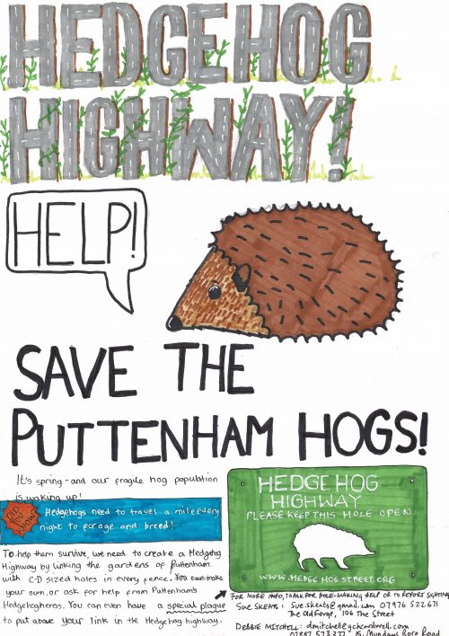 Kit's A3 poster - Hedgehog Holemaking